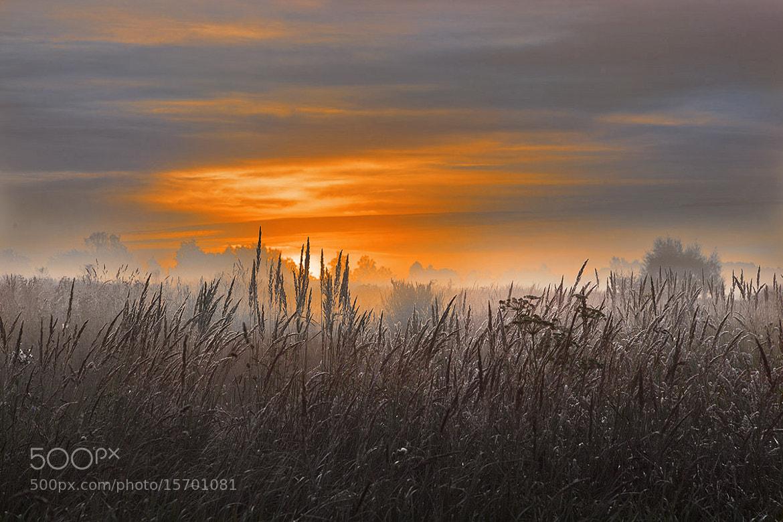 Photograph Morning by Viacheslav Krasnoperov on 500px