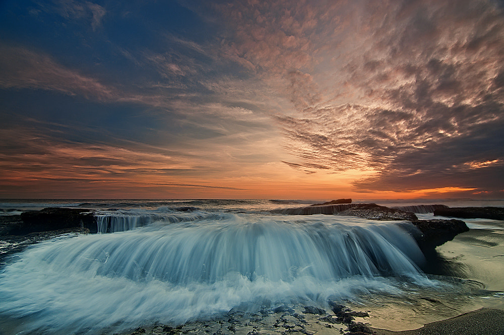 Photograph flow with heart by oka parmana on 500px