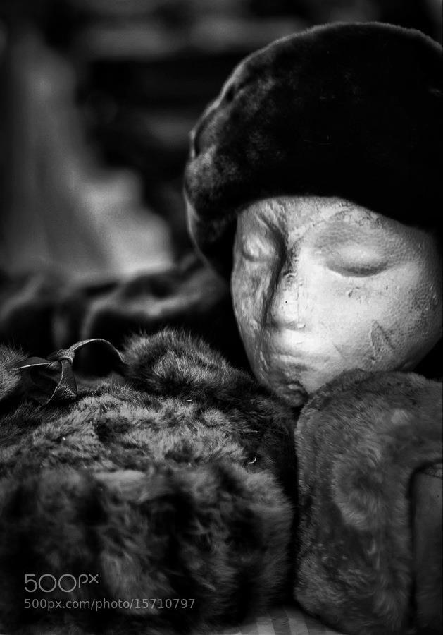 Photograph Untitled by André-Marc Lanteigne on 500px