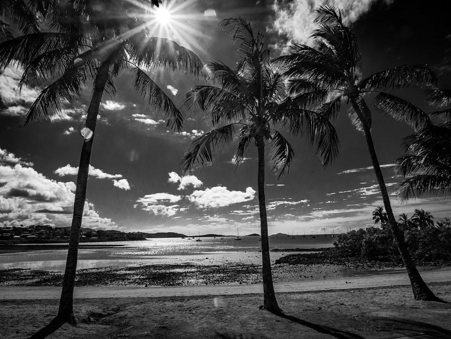 Airlie Beach QLD Australia by Travis Chau on 500px.com