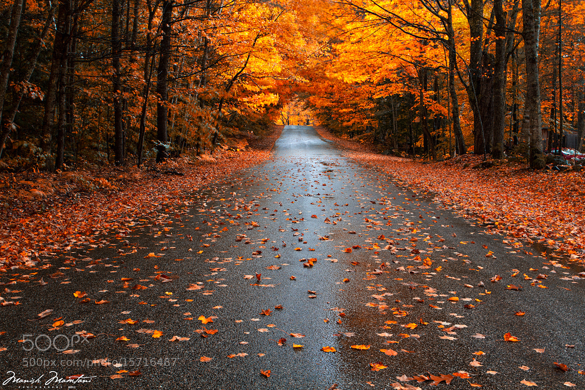 Photograph Fall is here :) by Manish Mamtani on 500px