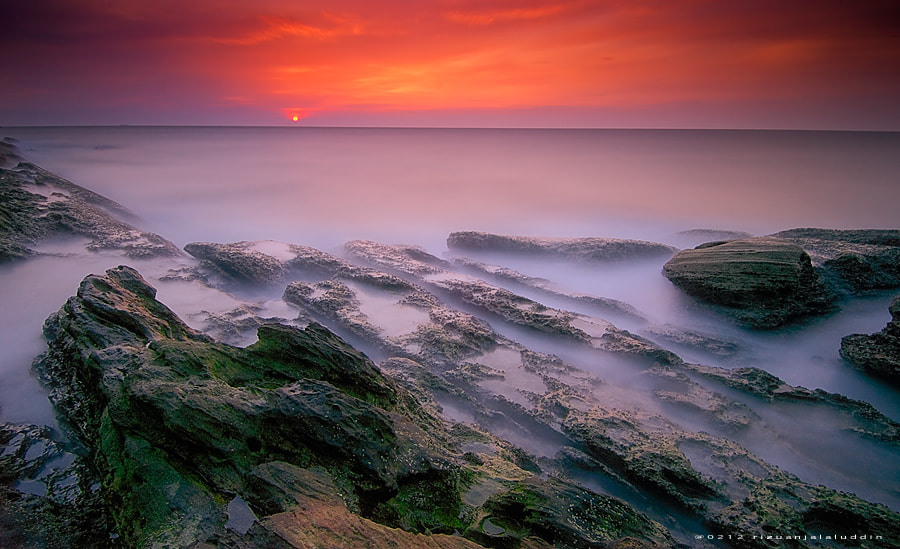 Photograph Untitled by Rizuan J on 500px