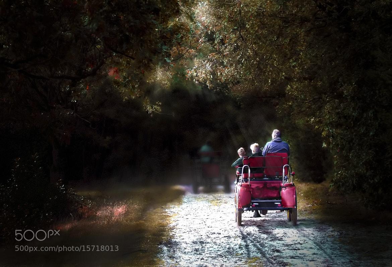 Photograph Autumn Sun by Ton   lع Jeune on 500px