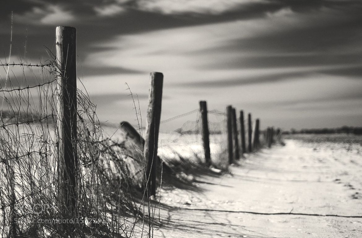 Photograph Fading Fence by Daniel Bosma on 500px