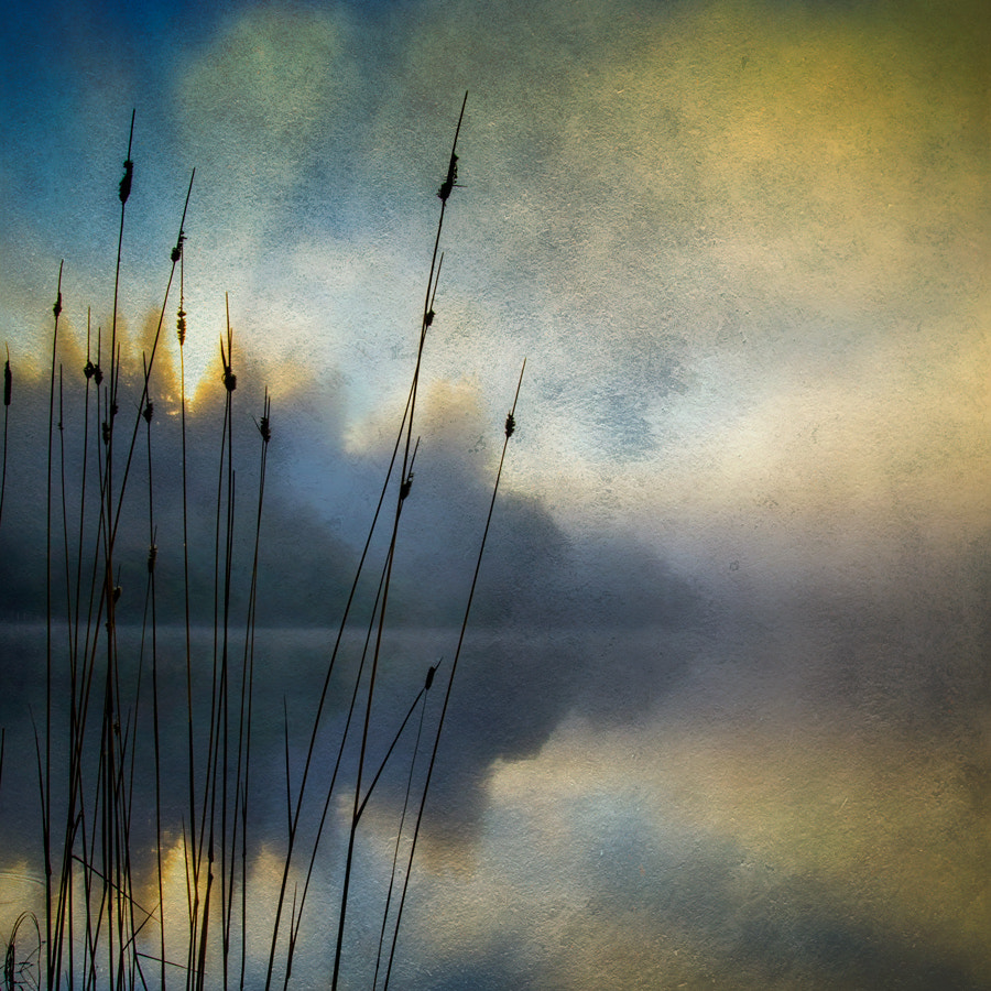 Photograph Morning texture... Loch Ard by David Mould on 500px