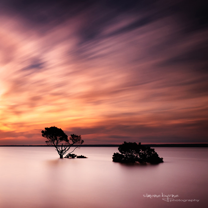 Photograph Duo by Simone Byrne on 500px