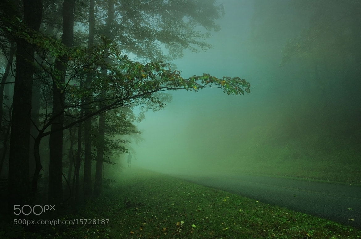 Photograph Foggy Morning... by Maria Jaeger on 500px