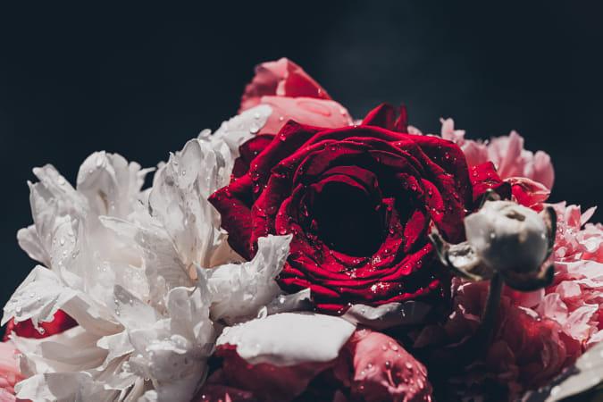 Flower in Dark