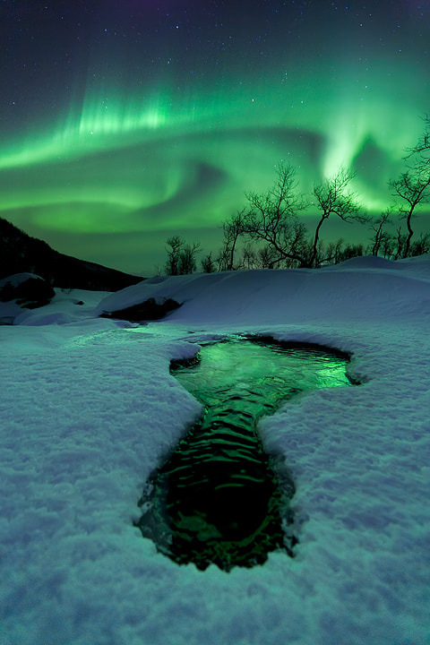 Photograph Bigfoot by Arild Heitmann on 500px
