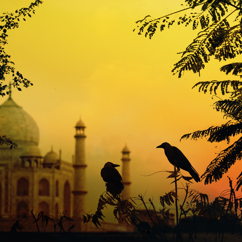 Photograph dusk in Agra by piet flour on 500px