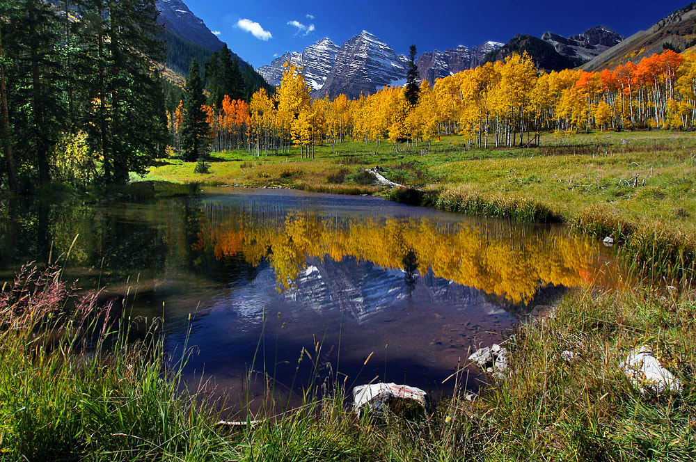 Photograph Falls Foliage at Maroon Bells by al juniarsam on 500px