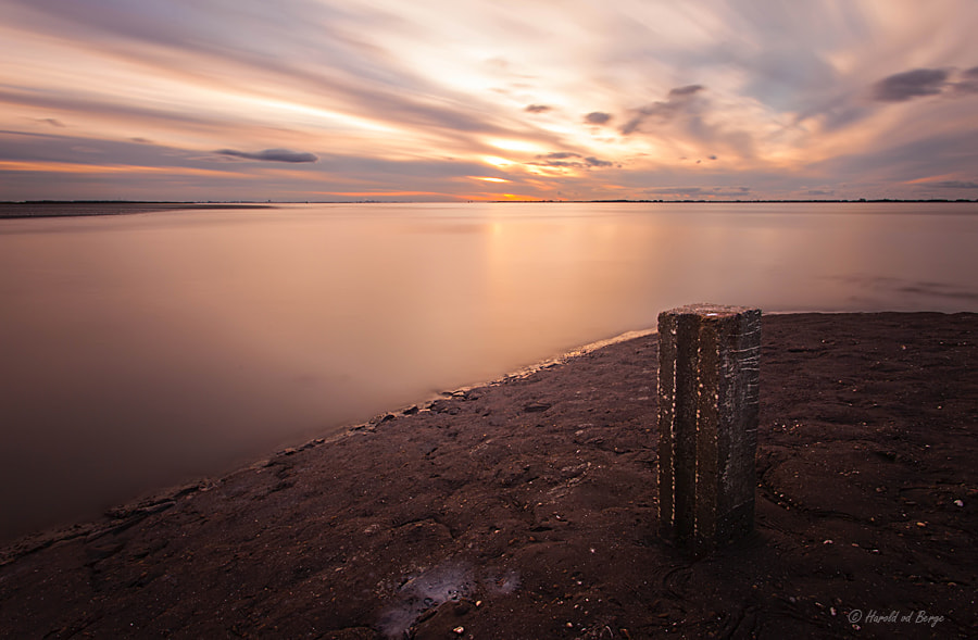 Photograph In the last light by Harold van den Berge on 500px