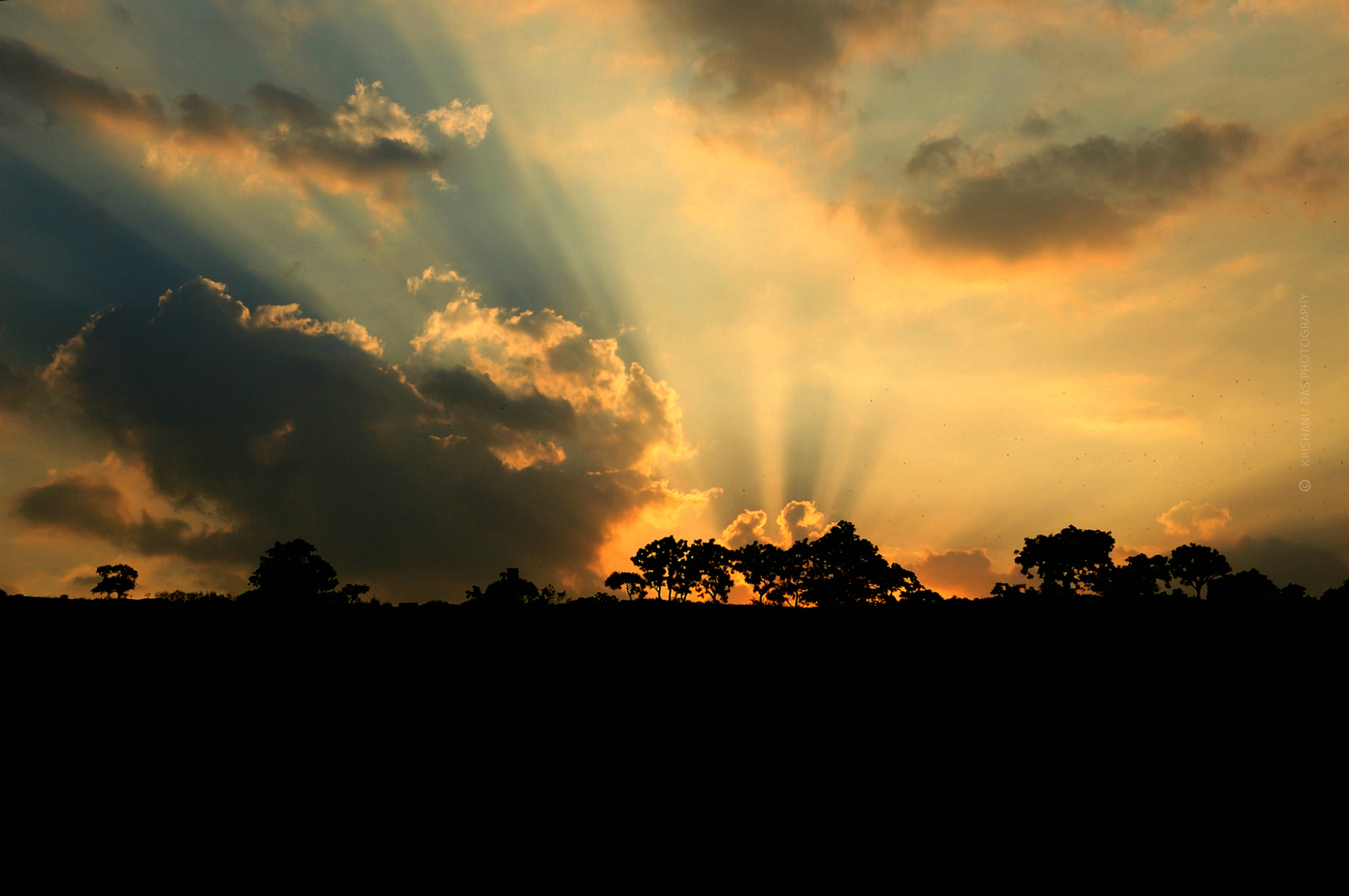 Photograph In search of light by Krishanu  Das on 500px