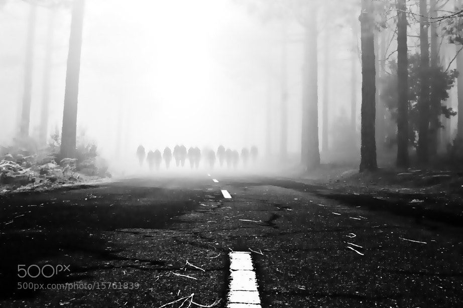 Photograph the way of the lost souls by Emilio Jose Hernandez Barrionuevo on 500px
