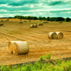 love country scenes...fresh hay!!