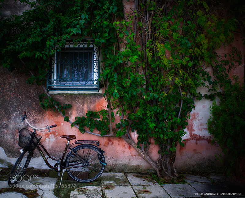 Photograph Waiting by Andreas Politis on 500px