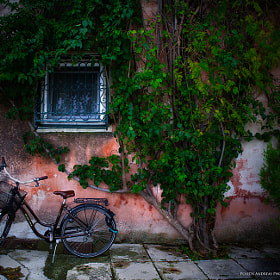 Waiting by Andreas Politis (andpolitis)) on 500px.com