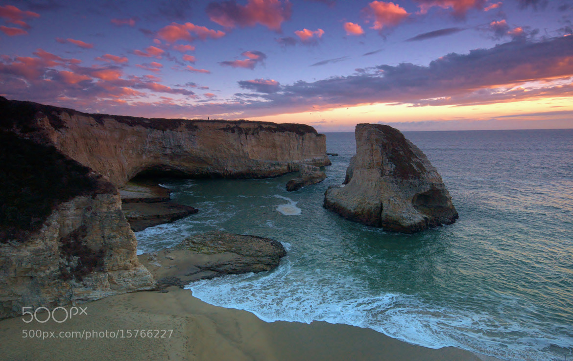 Photograph Shark Fin Cove by Landscape Traveller on 500px