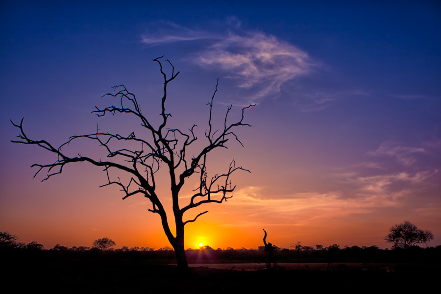 Photograph New Day in Motswari by Mario Moreno on 500px