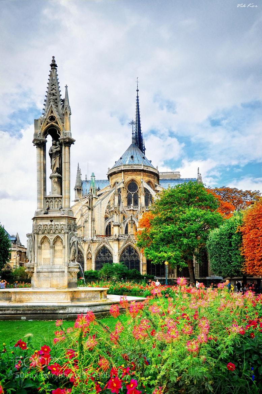 Photograph Notre Dame de Paris* by Viktor Korostynski on 500px