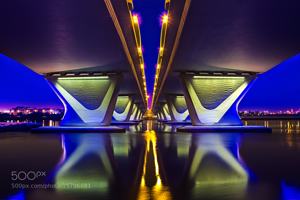 Photograph D' Color's Of D' Night Under D' Bridge 2 by anthony mejia on 500px