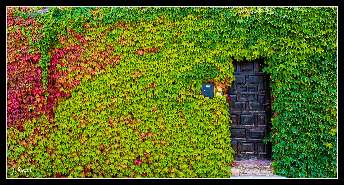 Photograph La Puerta by Juan Real on 500px