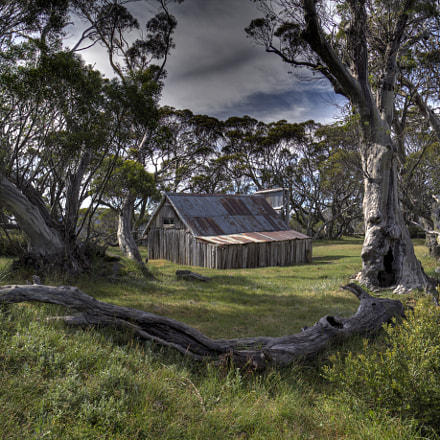 Wallace's Hut, Bogong High Plains, Alpine National