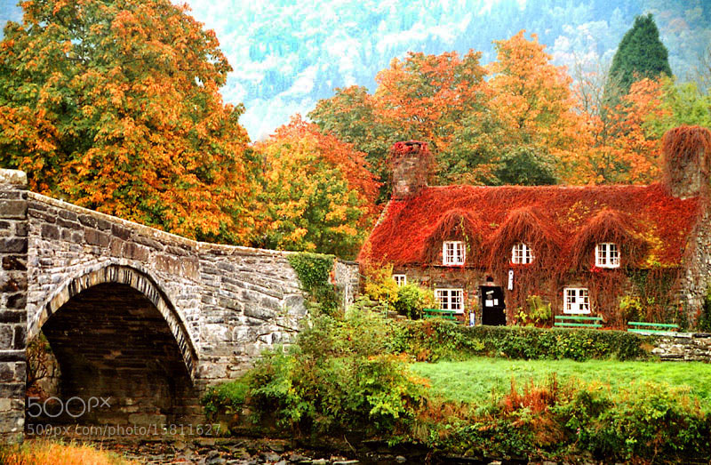 Photograph  AUTUMN in LLANRWST... WALES by Magda Indigo on 500px