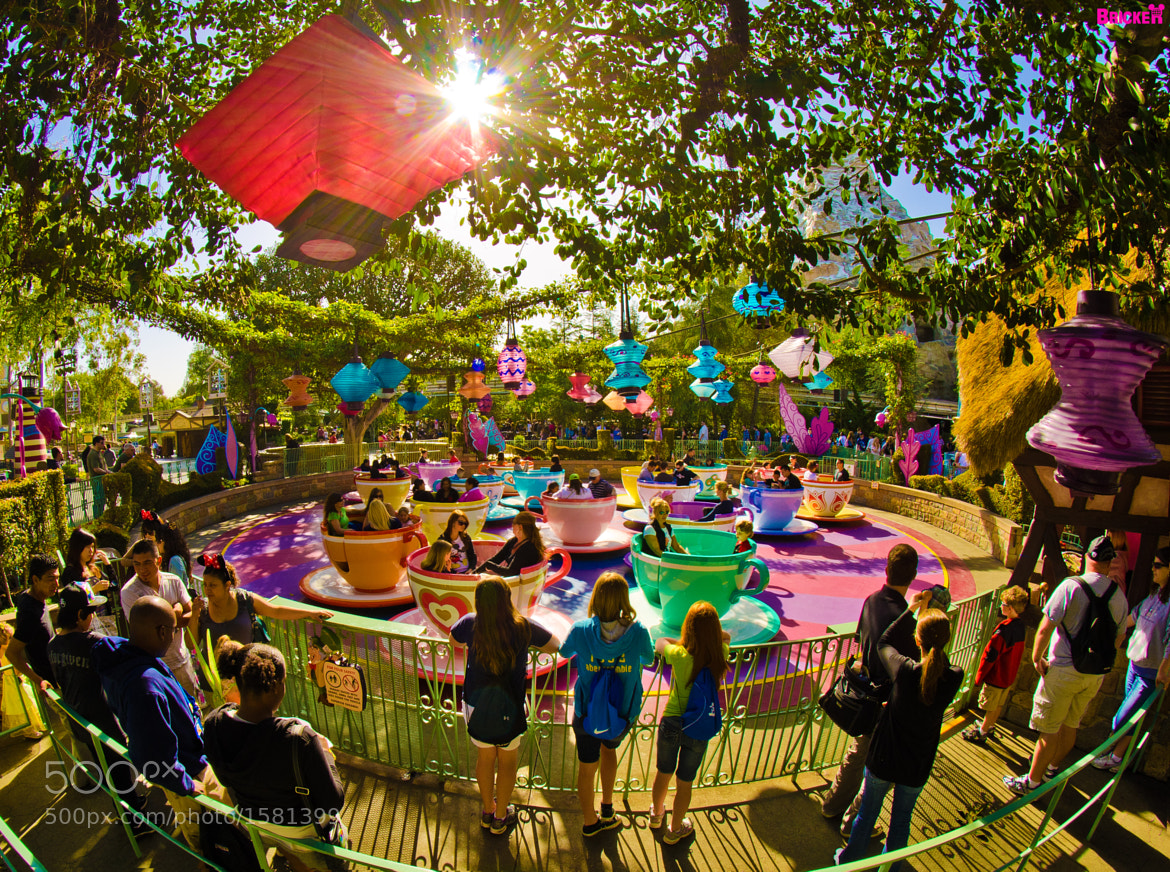 Photograph Disneyland - Mad Tea Party by Tom Bricker on 500px