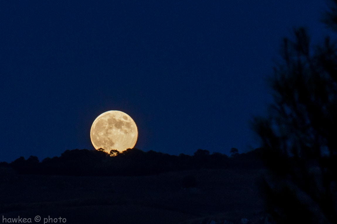 "Photograph Blue moon by Fabio ""Hawkea"" Bucchieri on 500px"