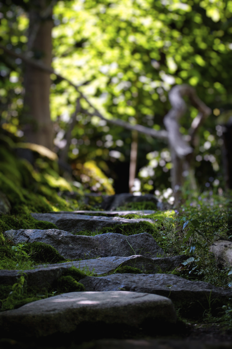 Photograph Garden Steps with Railing by Xavier Wiechers on 500px