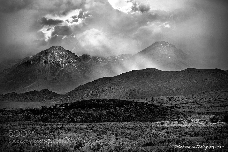 Photograph The Light, Eastern Sierra  by Mark  Jansen on 500px
