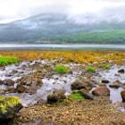Mist over Loch Long
