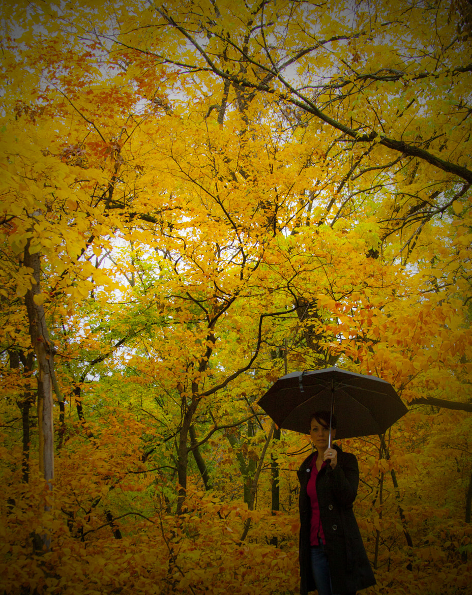 Photograph A walk in the rain by Mark W on 500px
