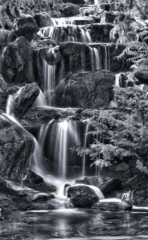 Photograph HDR Water Falls Van Dusen by Xavier Wiechers on 500px