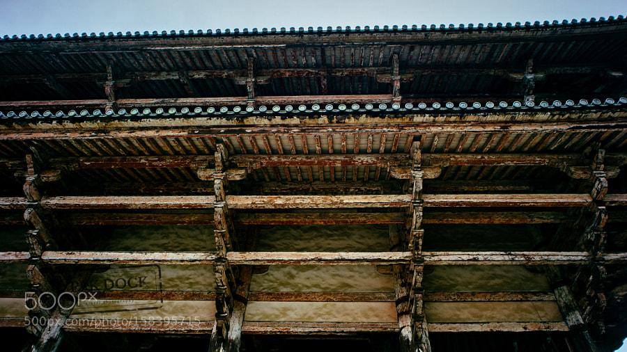 Detail - Nara