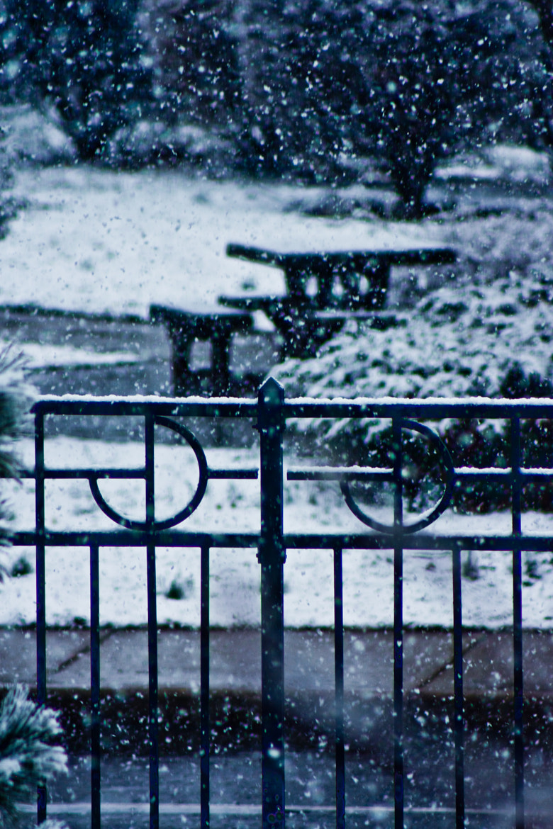 Photograph Winter by Gema Fernández on 500px