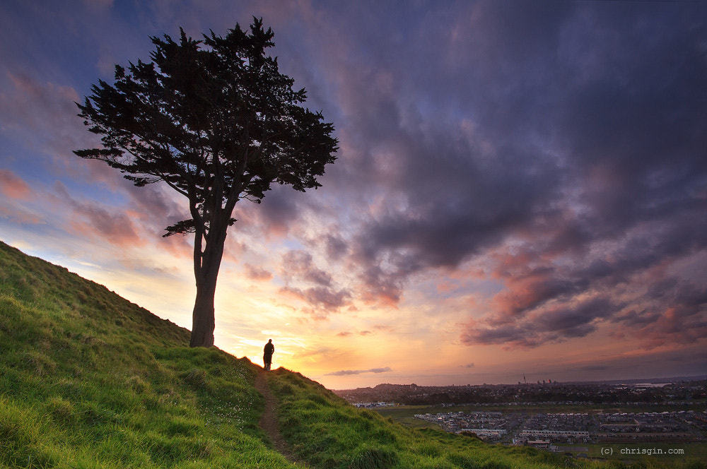 Photograph Man and Tree by Chris Gin on 500px