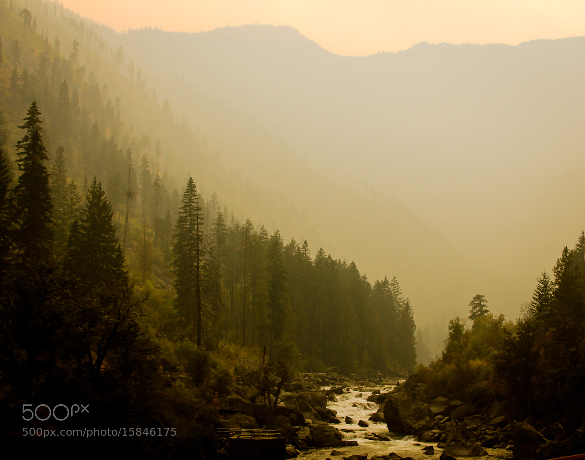 Photograph River in Cascade Range by Brendan Lilly on 500px