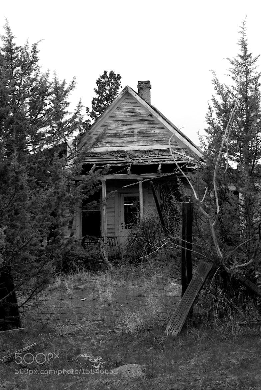 Photograph Wapinita, Oregon by Brendan Lilly on 500px