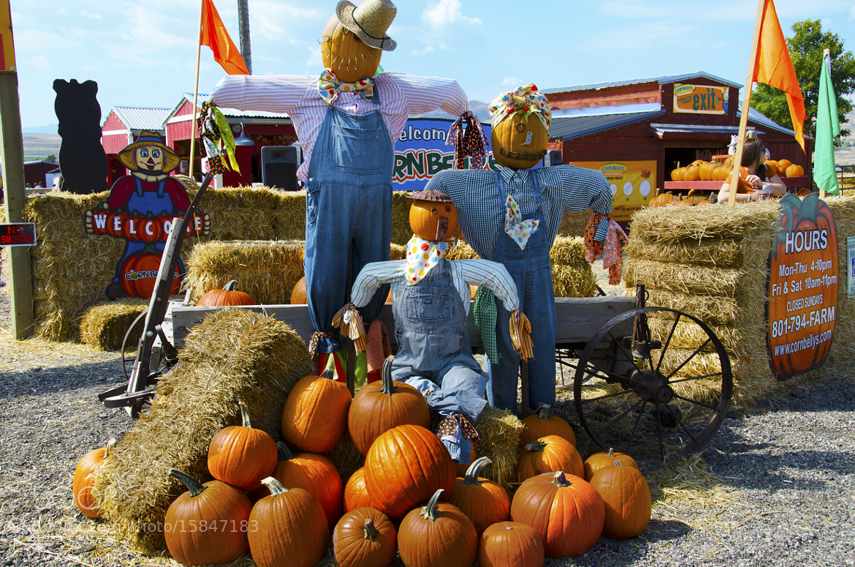 Photograph Halloween celebration by Steve Burns on 500px