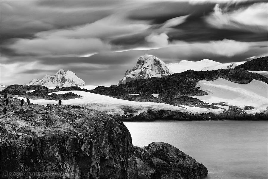 Photograph Gentoo Point - Antarctica by Martin Bailey on 500px