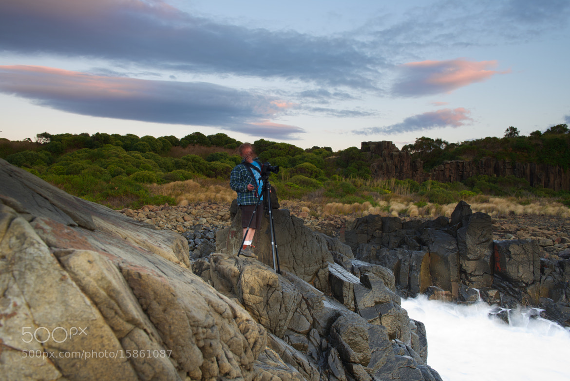 Photograph Wally on a rock by donald Goldney on 500px