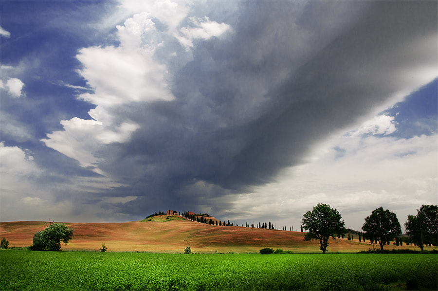Photograph Tuscany in June 2012 by claudio naboni on 500px