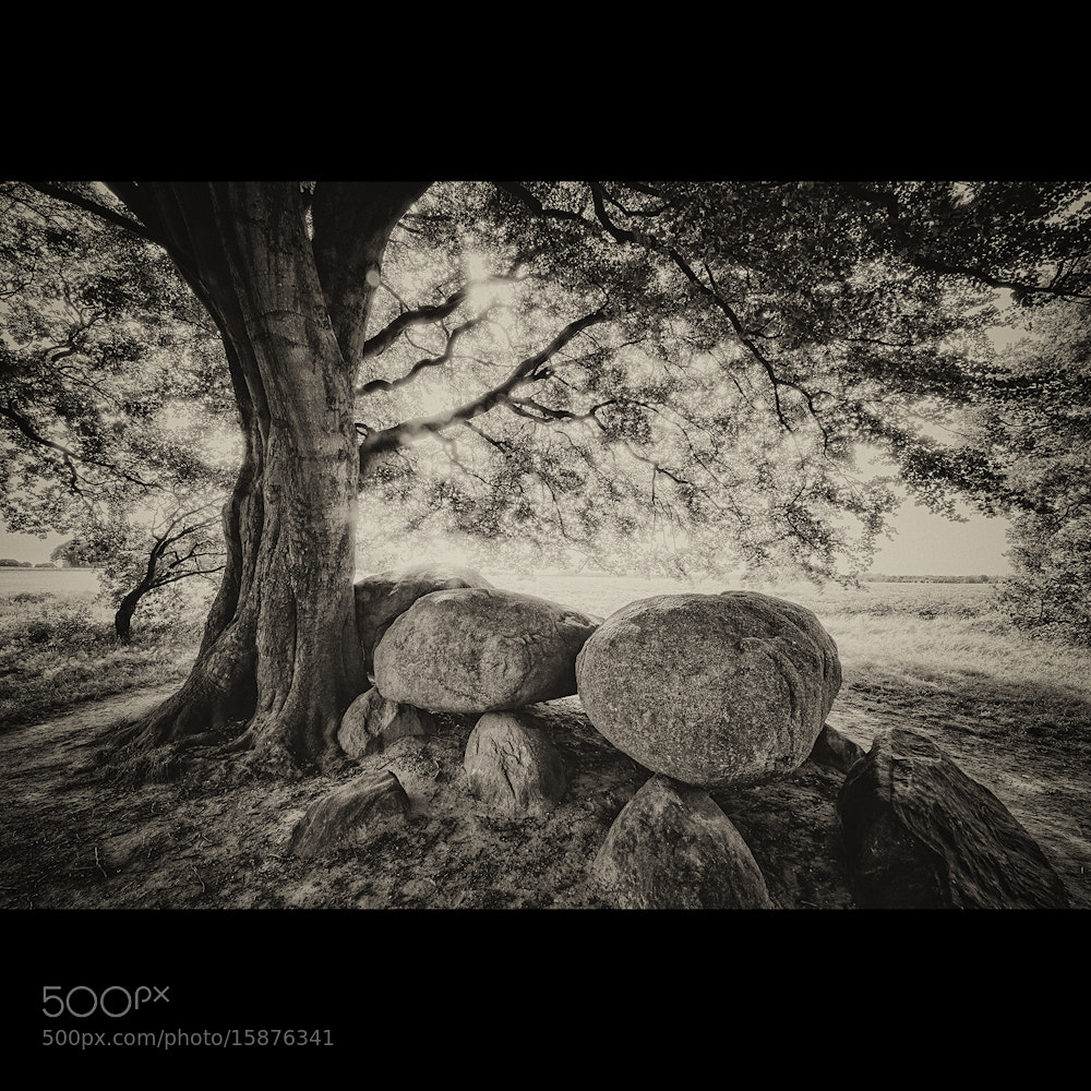Photograph Stones of the Old Age by Allard Schager on 500px