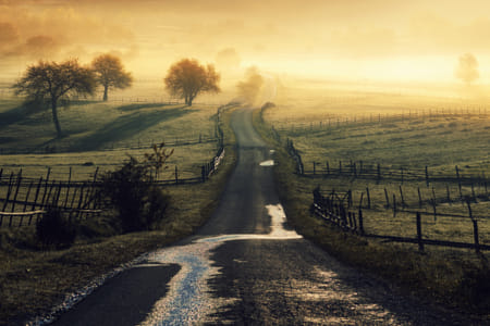 Country road II by Klassy Goldberg on 500px