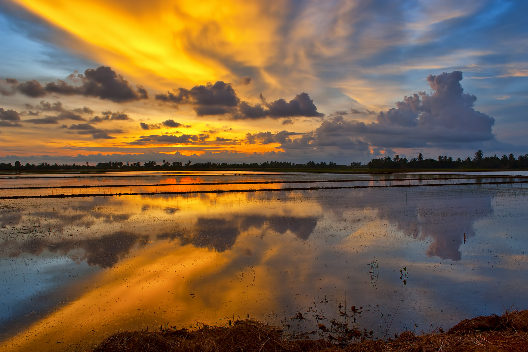 Photograph Mirror of The Nature by Aismat Azizan on 500px