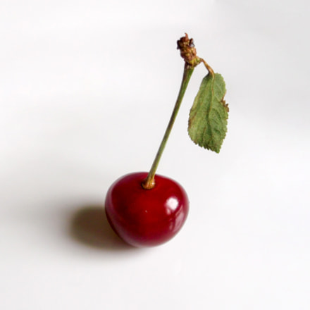 Cherry note, Fujifilm FinePix AX600