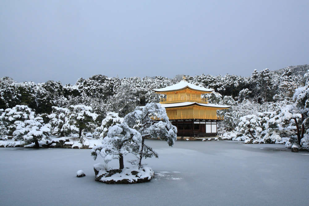Photograph Golden pavilion in snow by T N on 500px