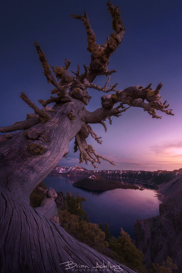 New Beginnings by Brian Adelberg on 500px.com